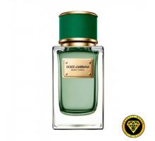 [1044] D&G velvet cypress